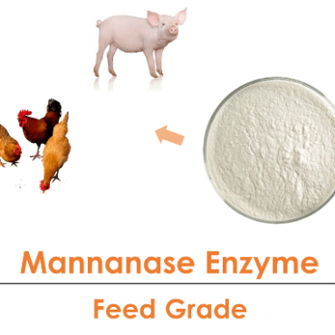 beta Mannanase Enzyme Powder  Poultry Feed Grade