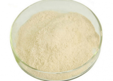 LIPASE FEED GRADE FOR ANIMAL FEEDSTUFF ADDITIVES
