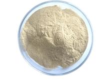 Beta-Glucanase β-glucanase
