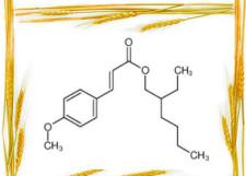 Octyl 4-methoxycinnamate cas 5466-77-3