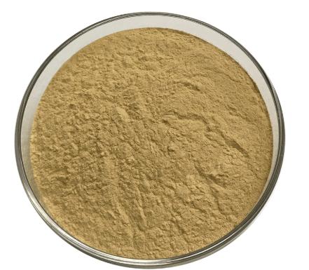 Bacillus Amyloliquefaciens bio-fertilizer fertilizers enzyme